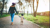 Is een ouderschapsplan ook verplicht bij baby's?